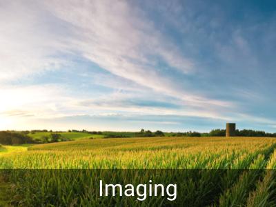Othopaedic Services Imaging Mahaska Health Oskaloosa IA